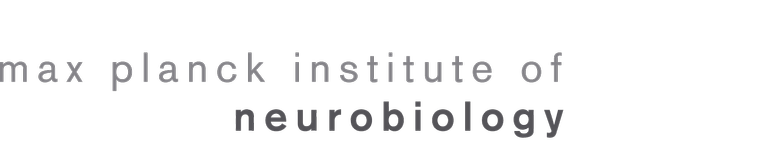 Max Planck Institute of Neurobiolgy Logo